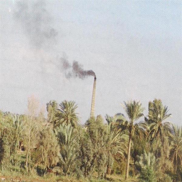 صور بيئية 10_600x600